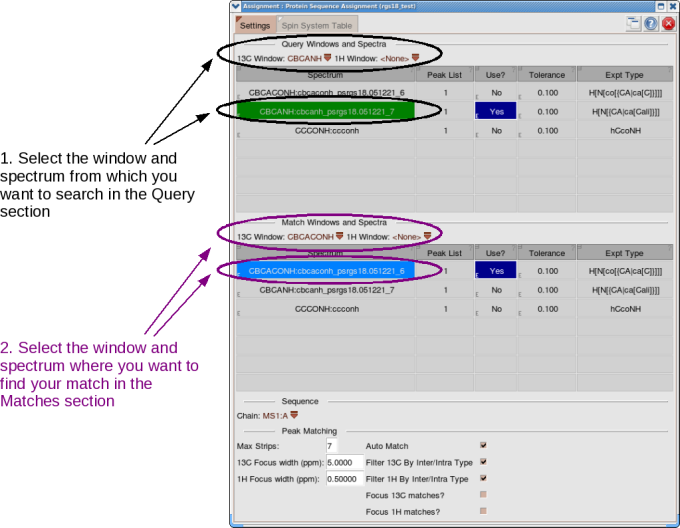 Protein Sequence Assignment Systems pop-up, Settings tab