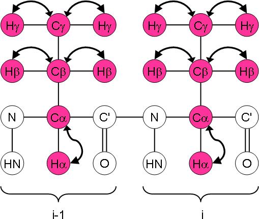 13C-HMQC magnetisation transfer