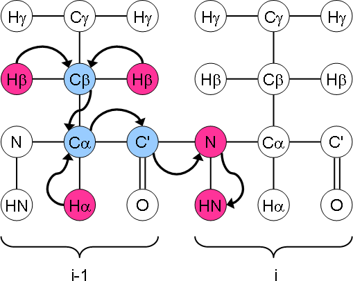 HBHA(CO)NH magnetisation transfer