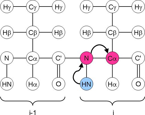 NCA magnetisation transfer