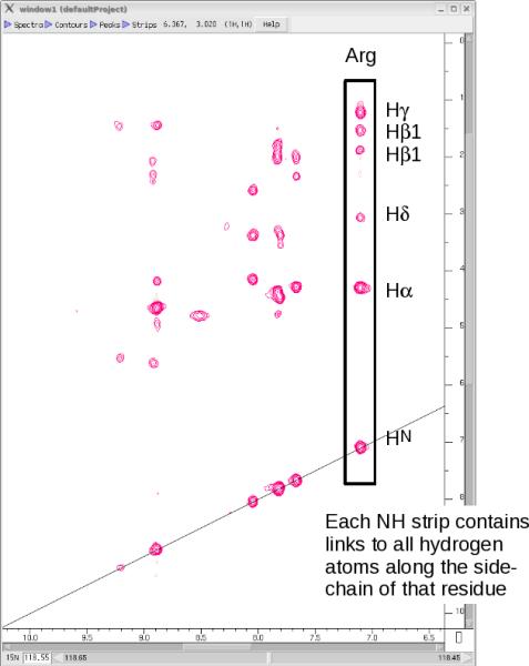 15N-HSQC-TOCSY spectrum