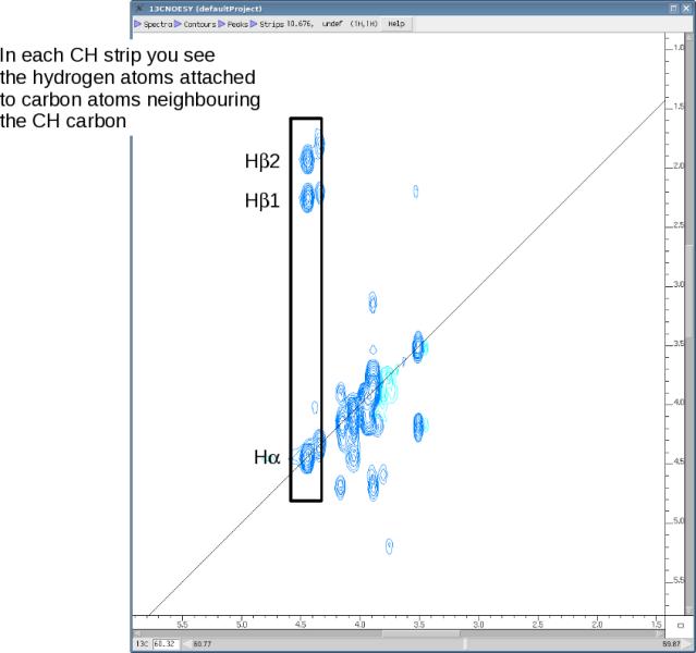 HCCH-COSY spectrum